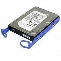 39M4504 IBM 160-GB Simple Swap 7.2K SATA HDD - Naturawell update