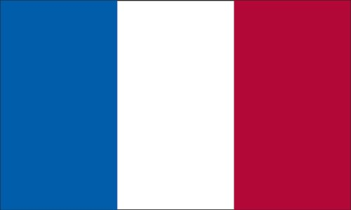 America's Flag Company FF3X5NFRA1 3-Foot by 5-Foot Nylon France Flag