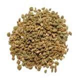 Graines de céleri à base de plantes capsules