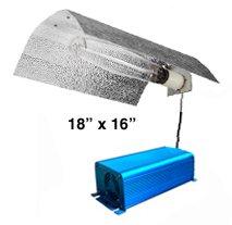 Cheap 400 watt Bat Wing MH/HPS Electronic Digital Grow Light System