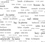 250 Spanish Vocabulary Words Shower Curtain