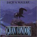 Gran Condor: Music of the Andes