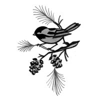 Stained Glass - Etched Bevel Oval 4x6 Chickadee Studio One