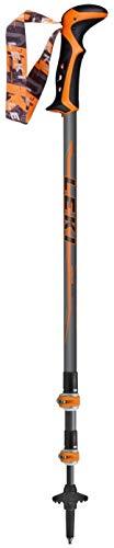 - LEKI Legacy DSS Trekking Pole
