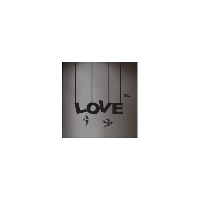 WallStickerUSA Medium LOVE 3 Birds Quote Saying Wall Sticker Decal Transfer Film 17x25