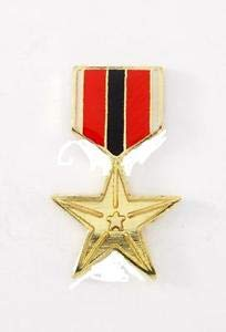 766 Star - Wholesale Lot of 12 U.S. Air Force Bronze Star Lapel Hat Pin Military PPM 766 by HighQ Store