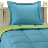 Aeolus Down Microfiber Down Alternative Comforter Set, Twin/Twin X-Long Teal/Lime 66X92