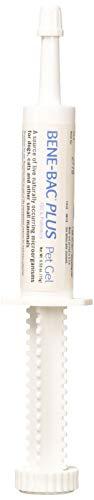 PetAg Bene-Bac Plus Pet Gel FOS Prebiotic and Probiotic, Carded, 15 gm