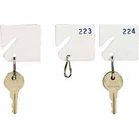 Numbered Hooks 100 (MMF Industries 5313231AE06 Slotted Rack Key Tags with Snap-Hook, White, Numbered Sequence - 81 - 100, 1-1/4H Inch, Plastic/Nickel-Plated Snap Hook (20 per Pack))