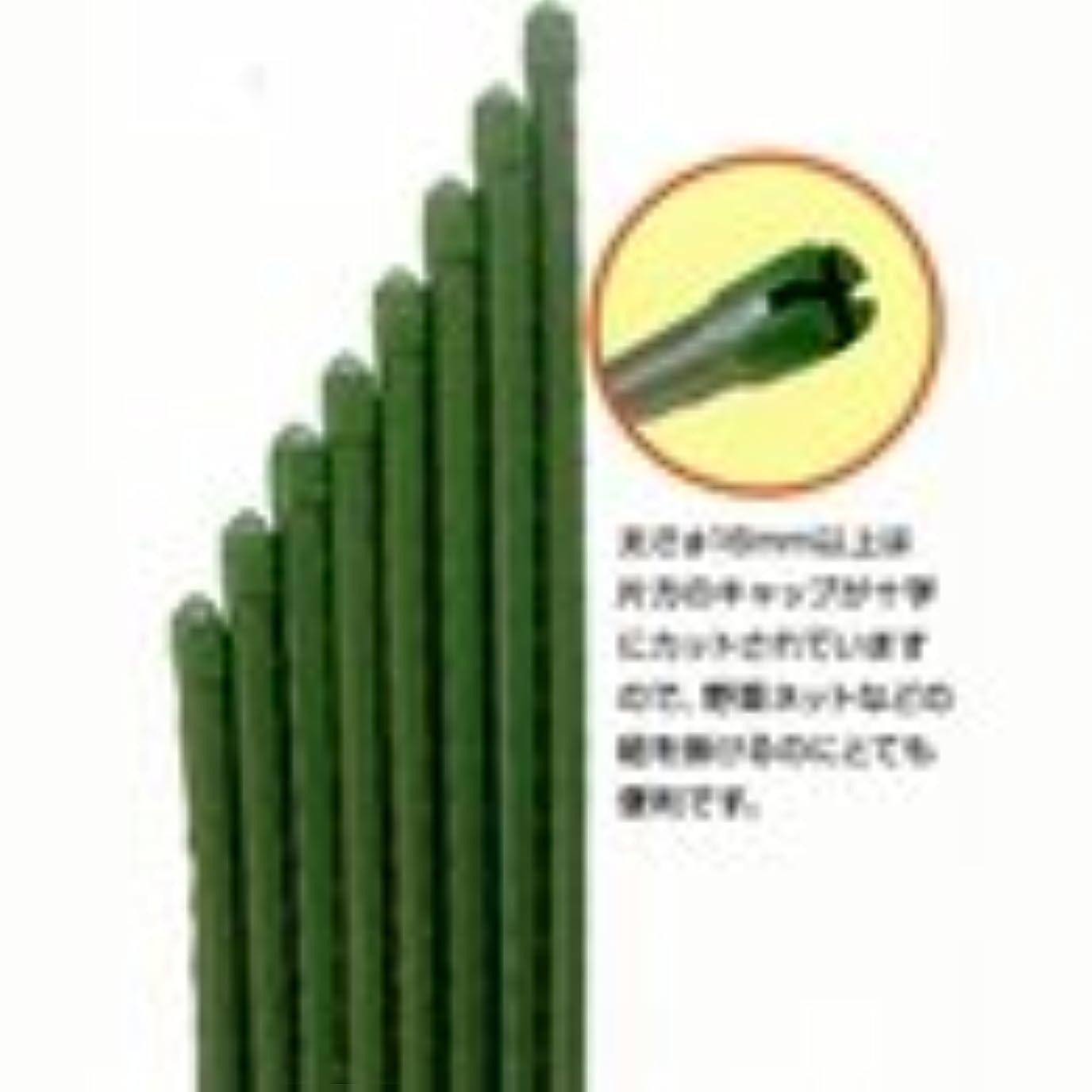 決定豊富に振る舞いイボ竹シルバー 口径20mm×長さ210cm 50本