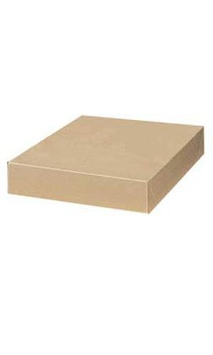 Count of 100 Apparel Boxes - Kraft - 86303 with 15'' x 9½'' x 2''