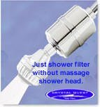 Shower Swan Crystal (Crystal Quest CQE-SP-00802 Luxury Shower Power Chrome Shower Head by Crystal Quest)