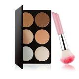 6-Color Powder Blush Palette Set with Blush Brush 10014650