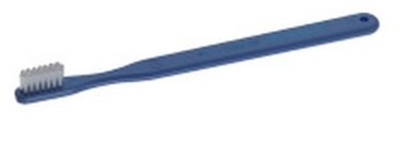 先例提案する展示会PROXIDENT プロキシデント コンパクトヘッド レギュラータフト #611