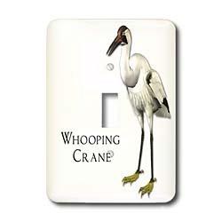 3dRose lsp_51601_1 Whooping Crane Shorebird Single Toggle (Crane Switchplate)