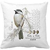 Winter Woodland Chickadee Throw Pillow Case