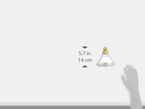 900-Lumen PAR38 Floodlight Bulb with Medium Base 1-Pack 75-watt replacement GE Lighting 62714 Energy-Efficient Halogen 50-Watt