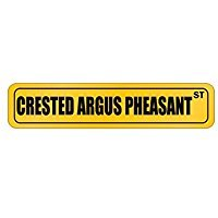 Crested Argus Pheasant ST - Animals - Street Sign [ Decorative Crossing Sign Wall Plaque ]