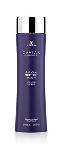 Alterna Caviar Anti-Aging Replenishing Moisture Shampoo | For Dry, Brittle Hair | Protects, Restores & Hydrates…