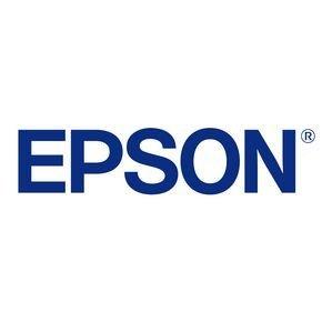 Epson Print Head, F173090 F173080