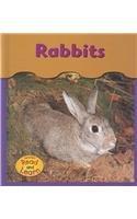 Rabbits (Under My Feet) PDF