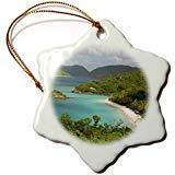 SheilaNelly USVI St. John Trunk Bay Virgin Islands Cindy Miller Hopkins Porcelain Snowflake Decorative Hanging Christmas Ornament 3 inch -