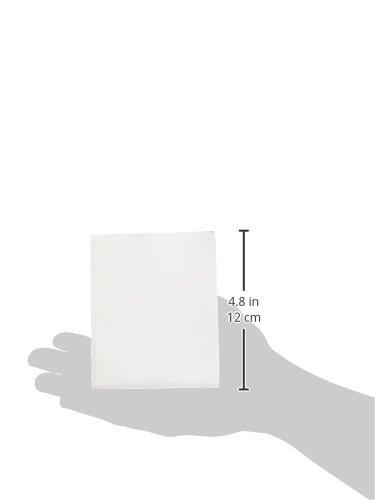 """Sacchetti di carta 3-1/2 """"X 6-1/2"""" 40/Pkg-bianco"""