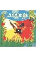 Read Online Ladybugs (Insects) ebook