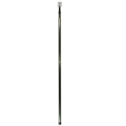 Frog Finished (Danielson Quick Release Frog Spear-Telescoping Handle)