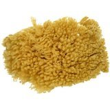 Natural Texturizing Sea Sponge 8-9 Inches ()