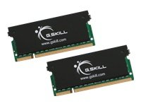 G.SKILL 4GB (2 x 2GB) 200-Pin SO-DIMM DDR2 667 (PC2 5300) Dual Channel Kit Laptop Memory with Heat Sinks Model F2-5300CL5D-4GBSK
