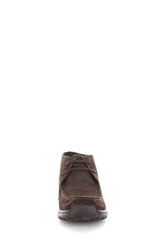 Igi&Co 6699300 Sneakers Uomo Caffè 45