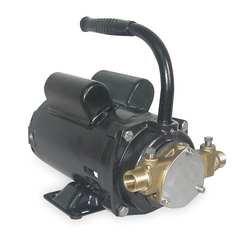 Dayton 3ABZ4 Pump, Bronze, 1/3 HP, 115/230V, 7.2/3.6 Amps by Dayton