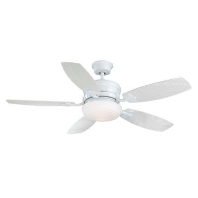 Home Decorators Collection Molique 54 in. White Indoor/Outdoor Ceiling Fan with Wall Control - Wet Flush Mount Fan