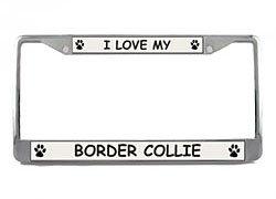 (Border Collie License Plate Frame (Chrome) 5 Year Warranty)