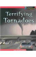 Terrifying Tornadoes (Awesome Forces of Nature) ebook