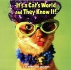 It's a Cat's World 2009 Mini Wall Calendar ()