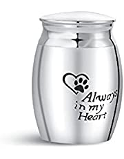 SBI Jewelry Small Urn for Pets Dog Ashes Heart Paw Print Memorial Keepsake Stainless Steel Cremation Urns