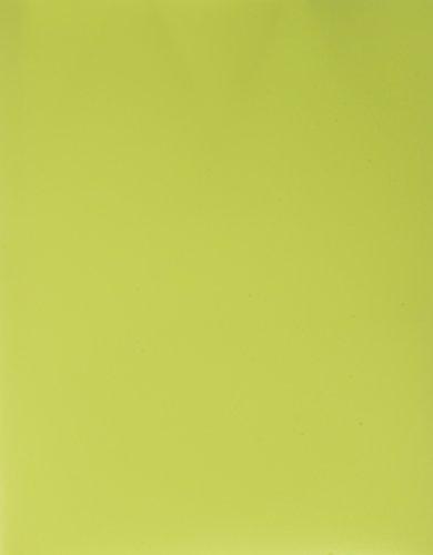 Filexec Products Prong, 2 Pocket, Pack of 5 Fastener Folder, Green (50499-67735)
