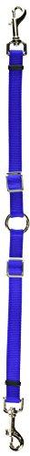 - Coastal Pet Products DCP669BLU Nylon Adjustable 2-Dog Coupler, Blue