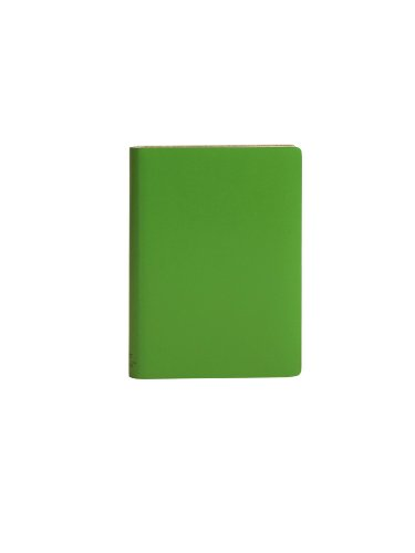 paperthinks-mint-pocket-ruled-recycled-leather-notebook-35-x-5-inches-pt90104