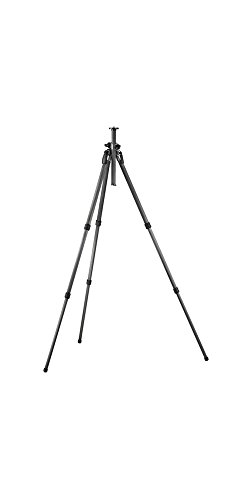 Gitzo GT2531EX Series 2 Carbon 6x 3 Section G-Lock Explorer Tripod - Replaces Gitzo GT2530EX (Black)
