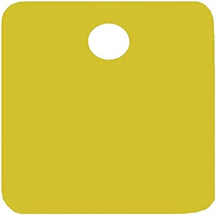 """CH Hanson Gold Blank Tag, Aluminum, Square, 1"""" Height, 5 PK - 43022"""