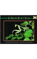 Insects (Mondo Animals)