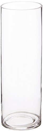 WGV Clear Cylinder Glass Vase, 4 by 12-Inch