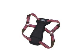 Coastal Pet Products DCP36945BRY K9 Explorer 1-Inch Harness for Dogs, Medium, Berry