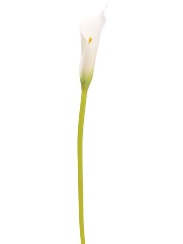 28-Single-Calla-Lily-Bud-Spray-White-Pack-of-24