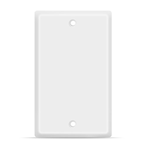 TNP Blank Wall Plate Outlet Cover - Blank Faceplate Socket Insert Jack Plug Panel Cover Single Gang Standard Size (1 Pack,White) ()