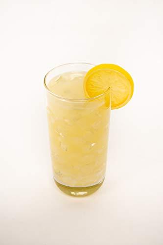 Realistic Food Replicas Refreshing Looking Faux Glass of Lemonade with Lemon