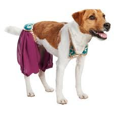 Star Wars Princess Lea Dog Costume Xs]()
